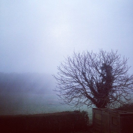 A Foggy Christmas