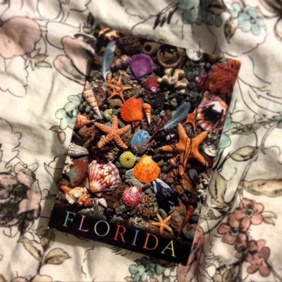 Postcard. Florida.