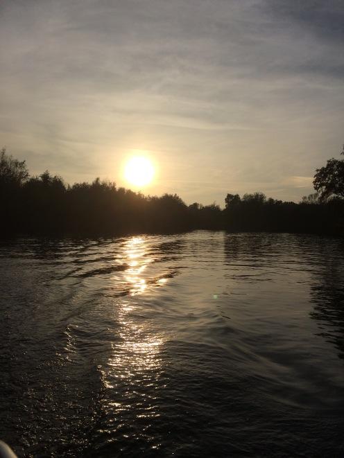 River, Norfolk Broads, Norfolk,